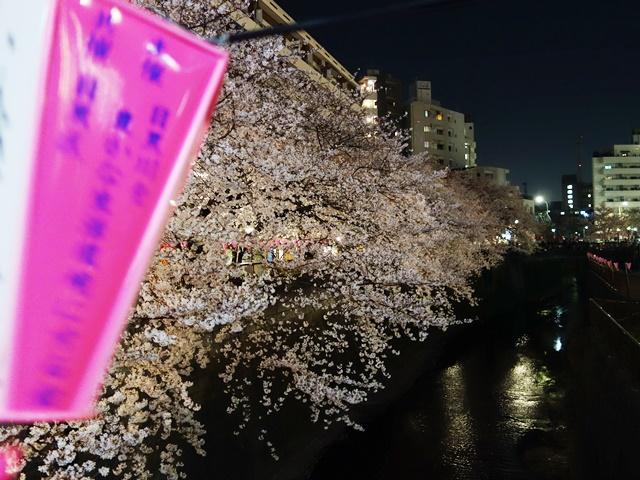 03.30安本ブログ1