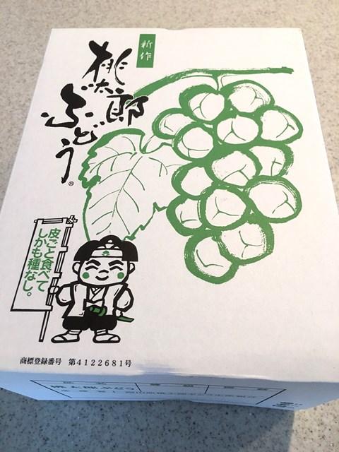 08.26安本ブログ1